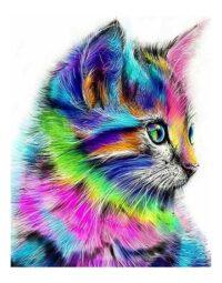 מספר וצבע – חתול