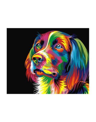 מספר וצבע – כלב