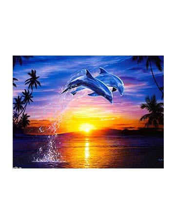 צביעה לפי מספרים דולפינים