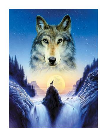 צביעה לפי מספרים זאב