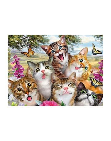 מספר וצבע – חתלתולים