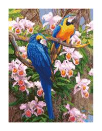 מספר וצבע – תוכים על העץ